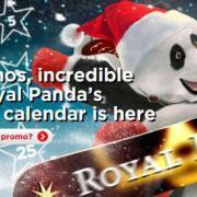 royalpanda advent